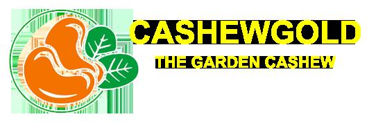 Chuyên sản xuất,xuất khẩu hạt điêu - Cashewgold